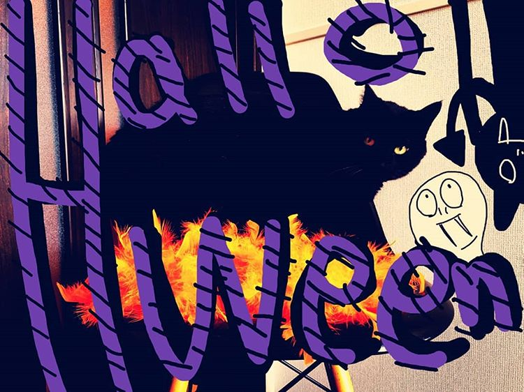 黒猫ハロウィーン blackcat halloween